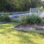 School Garden Continues to Bloom in Toledo