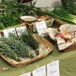 Farm Fare Produce Vendor