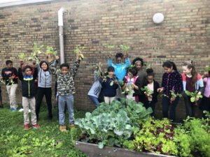 12 school age children standing behind raised bed garden holding plants they harvested