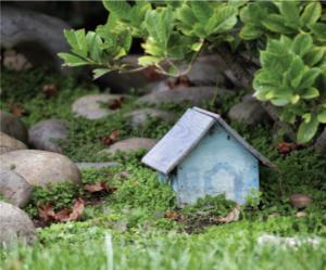 miniature garden with garden shed