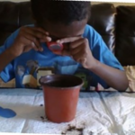 a boy using a magnifying glass to look at a plant